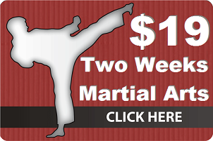 Master Chang's Martial Arts Special Offer - 19 for 2